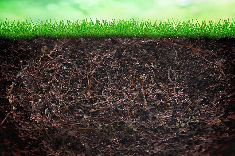 土壤墒情监测