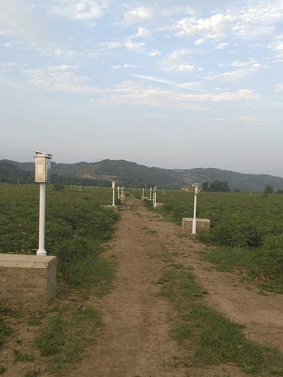 节水灌溉案例现场