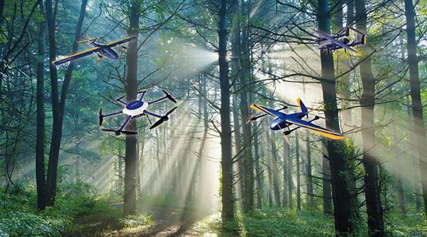 无人机森林防火解决方案