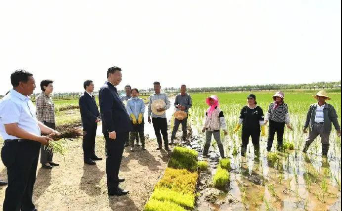 习近平总书记:积极发展节水型农业3
